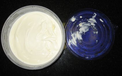 finished%20ice%20cream%20in%20storage%20container.jpg