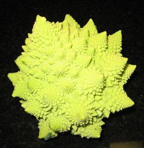romanesco%20cauliflower.jpg